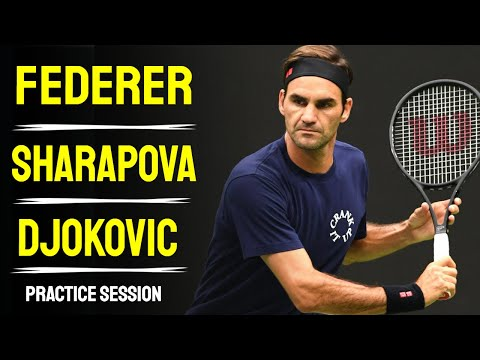 Federer - Sharapova - Djokovic -  Cincinnati Masters 2014 - Forehand, Backhand, Serve