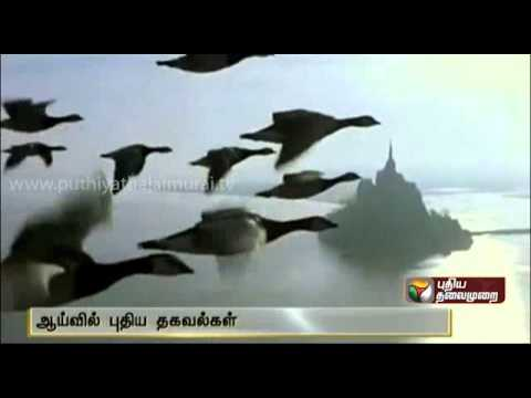 """Why to birds fly in the """"V"""" formation ?"""