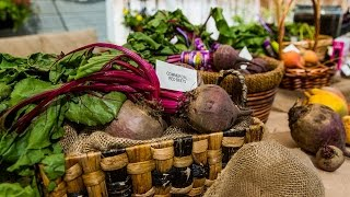 How to Grow the Perfect Beet