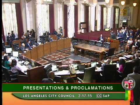 2015 Los Angeles Primary Nominating Election