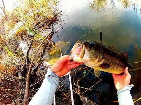 TOP SECRET California Bass Fishing Spot