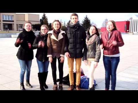 Marijampolės jaunimo organizacijos sveikina Lietuvą kovo 11-osios proga