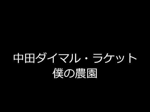 中田ダイマル・ラケットの画像 p1_10