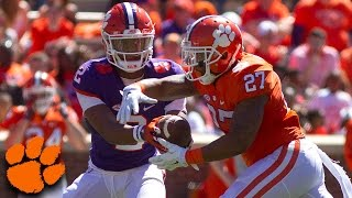 Clemson Football Spring Game Highlights (2017)