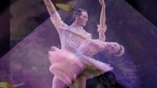 Watch Dan Fogelberg Dancing Shoes video