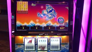 VGT Polar High Roller Hand Pay Jackpot - Peace Sign Pattern $50 Max Choctaw Gambling Casino