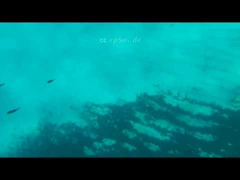 Sea Diving in Mallorca of Spain