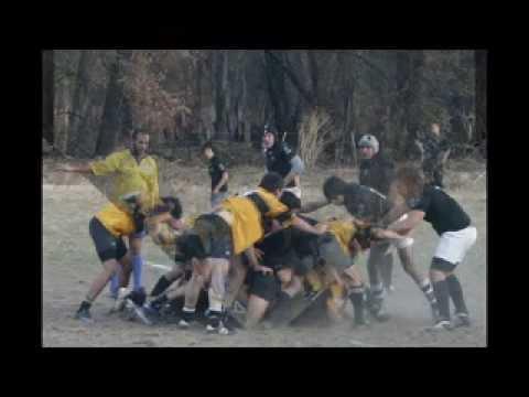 Los Osos 06/09/09 Disponible en DVD Alta definici�n