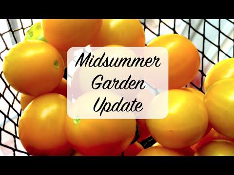 ★ MIDSUMMER GARDEN UPDATE ★