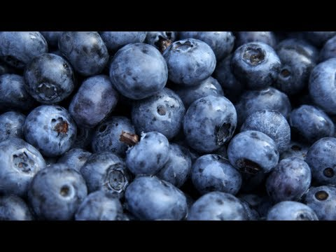 Blueberry Sauce and Blueberry Salsa - Farm to Fork with Sharon Vaknin/America's Heartland