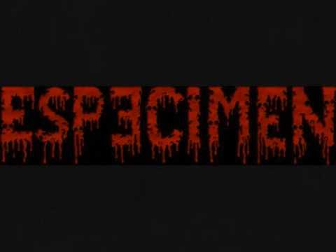 Especimen - Total