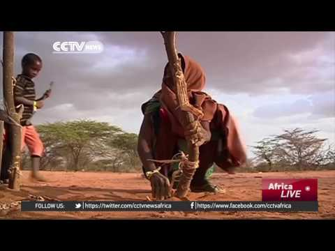 Somali Government Urging Kenya To Reconsider Its Decision