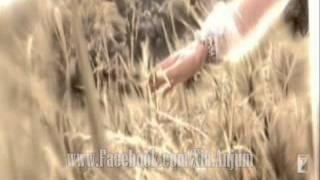 Mein Ne Dekha Tha Un Dino Me Usey - Mohsin Naqvi - Urdu Poetry Hindi Poetry - Zia Anjum Voice