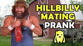 Insane Hillbill