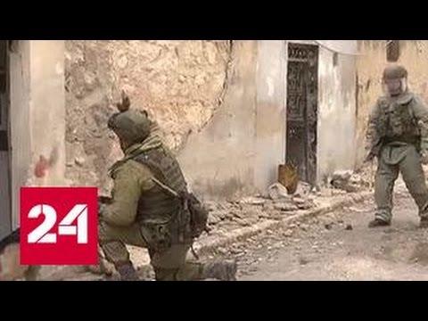 Алеппо возвращается к мирной жизни