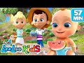Down By The Bay    THE BEST Songs For Children | LooLoo Kids