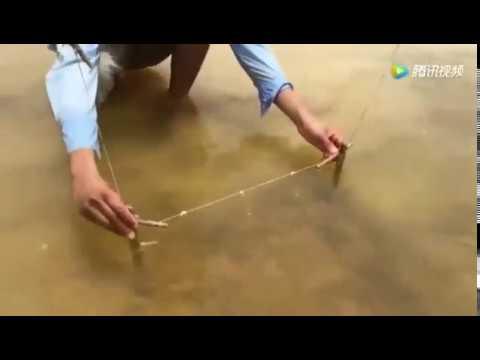 необычные способы ловли щуки