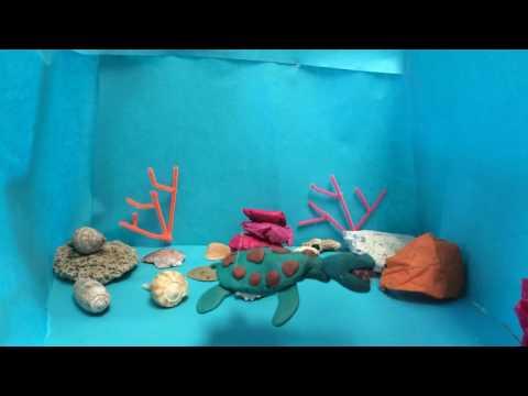 2016 Ocean Awareness Student Contest (Film) - Plastic Jellyfish - by Jack Lee