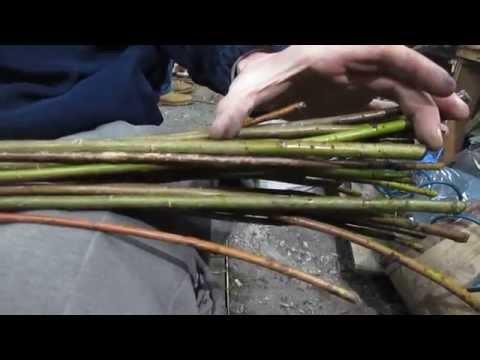 Подготовка лозы для плетения корзин видео