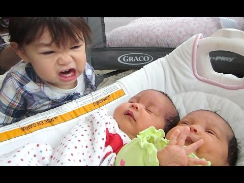 NO NO NO! - April 09, 2014 - itsJudysLife Daily Vlog
