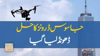 Trained Eagles Take Down Spy Drones Flying in The Air | jano.pk