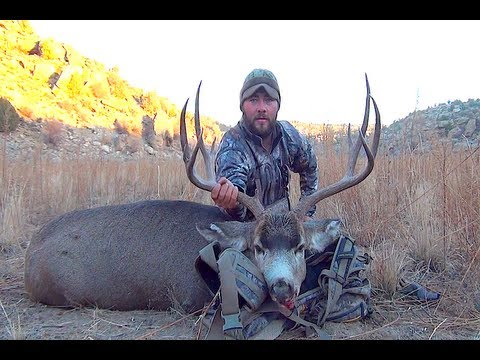 BIG NEW MEXICO BUCKS