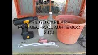 SISTEMA DE RIEGO CAPILAR CON MECHA DE AGUA EN PEPINO EN MACETA 1 CUAUHTEMOC 2013