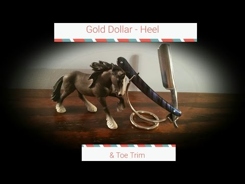 Gold Dollar - Heel & Toe Trim