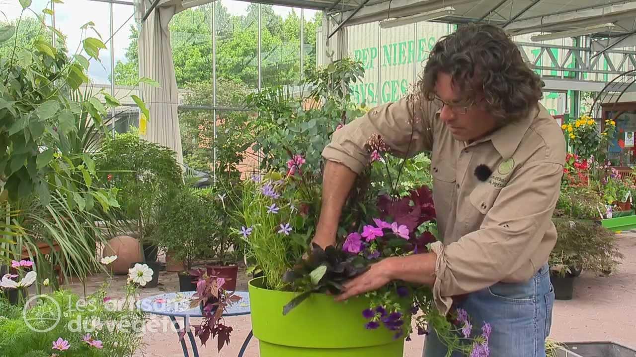 Astuces de pro pour de belles jardinières - YouTube