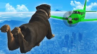 GTA 5 FAILS & WINS: #29 (GTA 5 Epic & Funny Moments Compilation)