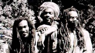 Watch Israel Vibration There Is No End video