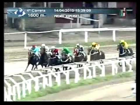 Vidéo de la course PMU PREMIO ASPERGES