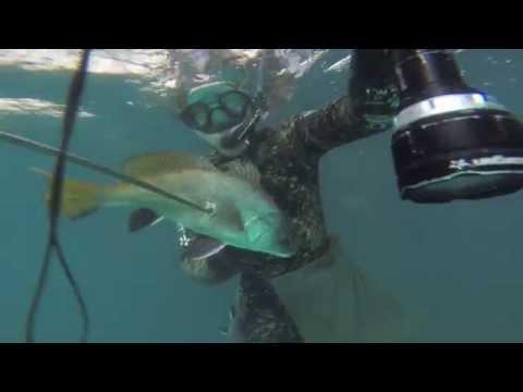 подводная рыбная ловля  во  абхазии