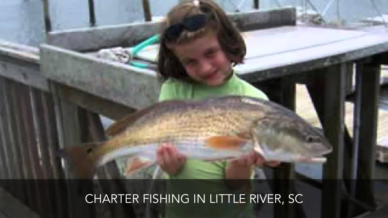 Charter fishing little river sc north myrtle beach fishing for Little river fishing charters