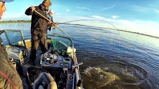 Рыбалка в Астрахани  2017