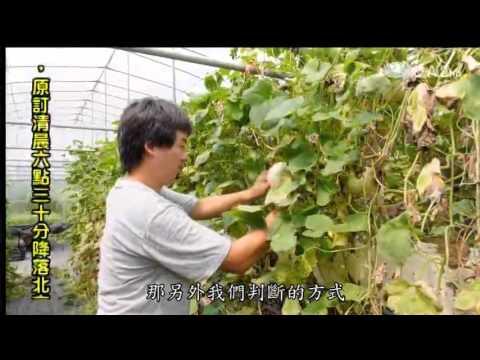 蔬果生活誌-20140308 逆轉癌症 素素看