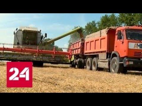 Дальневосточный урожай. Специальный репортаж Артема Кола