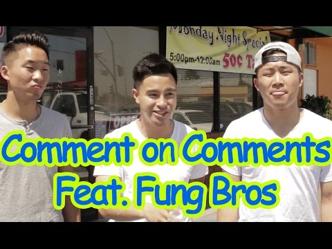 COMMENT ON COMMENTS FEAT. THE FUNG BROS