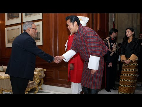 King of Bhutan calls-on the President - 25-01-13