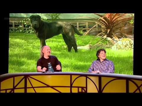 QI - Ecological footprint [QI S08E09]