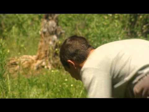 Bear Grylls killing a rabbit like a boss - YouTube