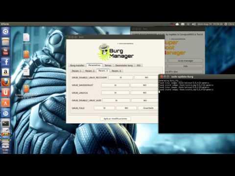Personalizar GRUB y Plymouth Ubuntu 13.04