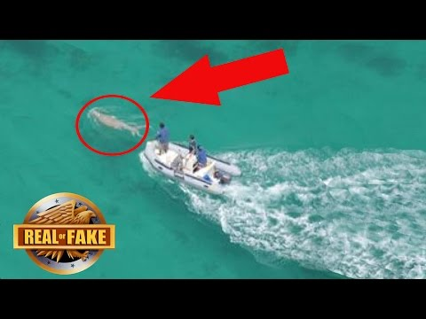 MERMAID CAUGHT ON TAPE PHILIPPINES - REAL OR FAKE?