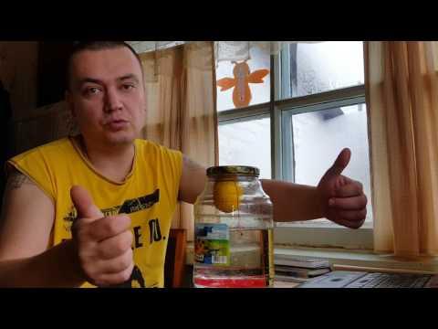 Лимонный висельник! Вкуснейший самогон с барботером!
