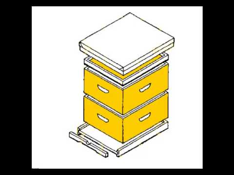 Bienenstock zu erstellen: Möchten Sie Ihre eigenen Bienenstock zu ...