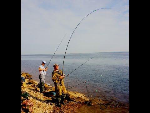 видео фидерная рыбалка на волге