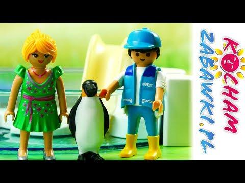 Playmobil Zoo - Sztuczki pingwinów - Bajki dla dzieci