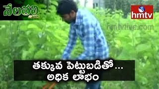 Success Story On Ideal Young Farmer Earn High Profits From Mulberry Cultivation| Nela Talli | hmtv