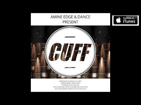 Amine Edge  DANCE  Naty - Your D Is my Passion (Original Mix...
