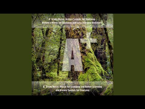 Study Nature Sounds - Atmosphere, Ambience and Delta Binaural Beats for Studying - Woodlands,...